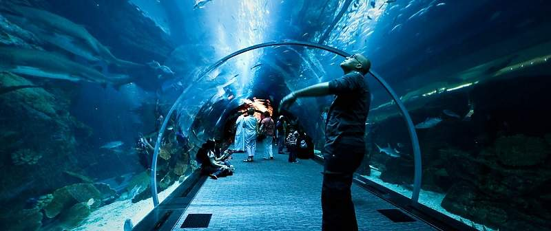 dubai-underwater-tunnel